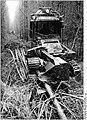 Bundesarchiv Bild 183-Z1028-008, Hagenow, Holzvollernter.jpg
