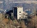 Burg Forst von Westen.jpg