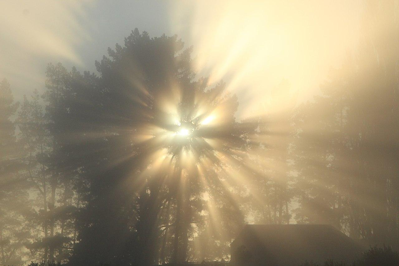 Burning bush atmospheric optics.jpg