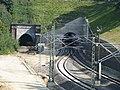 Buschtunnel.JPG