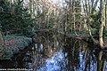 Bushy Park, Dublin (8389523403).jpg