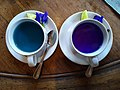 Butterfly-pea flower tea 3.jpg