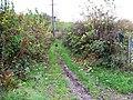 Byway, Smithy Lane - geograph.org.uk - 1575111.jpg