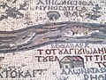 Byzantine floor mosaic map at St. George Church Madaba P1090125.JPG