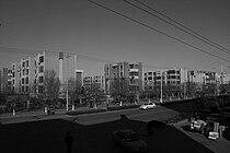CACdongying56492.jpg
