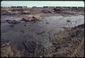CLEANUP OPERATIONS ON THIS FIVE ACRE POND WERE HALF FINISHED WHEN THIS PICTURE WAS TAKEN. DIKES HAD BEEN PLACED TO... - NARA - 555870.tif