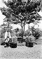 COLLECTIE TROPENMUSEUM Een Sundanese vogelhandelaar te Bandung Java TMnr 10002699.jpg