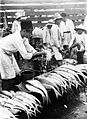 COLLECTIE TROPENMUSEUM Visveiling 'Pasar Ikan' te Jakarta Java TMnr 10002553.jpg