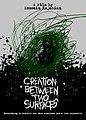 CREATION BETWEEN TWO SURFACES - A film by Hossein Rajabian . آفرینش بین دو سطح فیلمی از حسین رجبیان.jpg