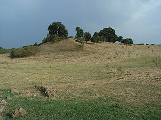 Park of the Caffarella - View in Caffarella Park--The Sacred Wood