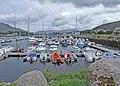 Caherciveen marina - geograph.org.uk - 1360318.jpg