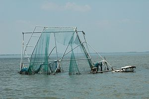 Calcasieu Lake - Hurricane debris (2006)
