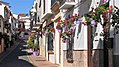 Calle papuecas one side - Estepona Garden of the Costa del Sol.jpg
