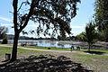 Cameron Park Lake.jpg