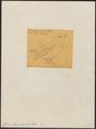 Campephaga cucullata - 1856 - Print - Iconographia Zoologica - Special Collections University of Amsterdam - UBA01 IZ16500385.tif