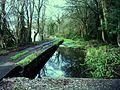 Canal at Nightingales Bush.JPG