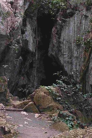 Capricorn Caves - Entrance to Capricorn Caves