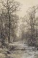 Carbonnel L. - Charcoal and chalk - Vue hivernale aux environs de Seurre - 47x63cm.jpg