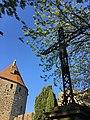 Carcassonne Chateau Jaune III.jpg