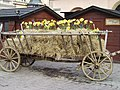 Carriage with Flowers (135376201).jpg