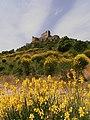 Castle of Aguilar127.JPG