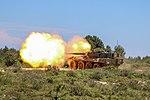 "Cavalry Regiment ""Lancieri di Montebello"" (8°) Centauro tank destroyer.jpg"