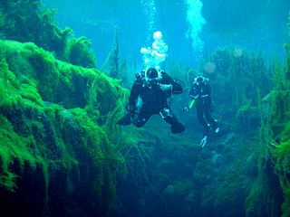 Piccaninnie Ponds Conservation Park Protected area near Mount Gambier in South Australia