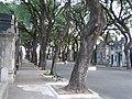 Cementerio Chacarita - panoramio.jpg