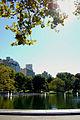 Central Park NY06.JPG