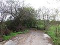 Cesta - panoramio (10).jpg