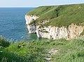 Chalk Cliffs, Flamborough Head - geograph.org.uk - 763099.jpg