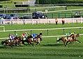 Champion Hurdle (13179017525).jpg