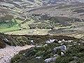 Charr, Glen Dye - geograph.org.uk - 834157.jpg