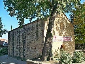 Châteauneuf-du-Pape - Saint Théodoric