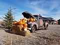 Chevrolet 1300 pickup truck - Flickr - dave 7.jpg