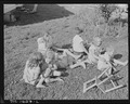 Children of miners playing on the lawn in company housing project. Koppers Coal Division, Kopperston Mine... - NARA - 540886.tif