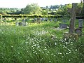 Churchyard at St George's Church, Damerham - geograph.org.uk - 449207.jpg