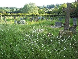 Damerham - The churchyard