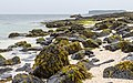 Claigan Coral Beaches, Isle of Skye.jpg
