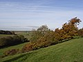 Clatford Bottom - geograph.org.uk - 278349.jpg
