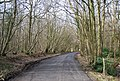 Clay Hill Rd in the woods - geograph.org.uk - 1759234.jpg