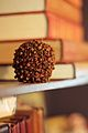 Clove apple on book shelf.jpg