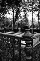 Cmentarz Komunalny we Włocławku - panoramio.jpg
