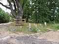 Cmentarz mennicko-ewangelicki w Rudaku.JPG