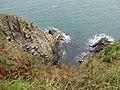 Coastal scenery, Dinas Island - geograph.org.uk - 1513952.jpg
