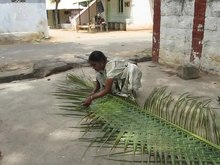 Datei:Coconut weaving.ogv