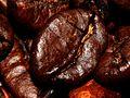 Coffee Bean (2732762000).jpg