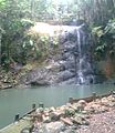 Colo-i-Suva Waterfall.jpg