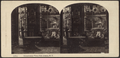 Conservatory view, Fifth Avenue, N.Y, from Robert N. Dennis collection of stereoscopic views 2.png
