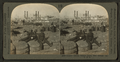 Cotton! cotton! cotton! levee, New Orleans, La. U.S.A, by Keystone View Company.png
